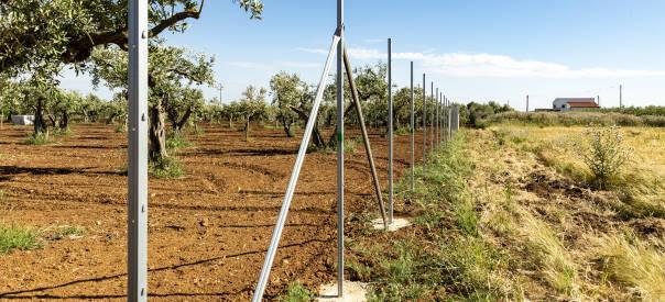 Recinzione Terreno agricolo con pali zincati a caldo ORMA