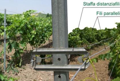 staffa distanzia fili ORMA vista frontale impianto vigento tralci viti